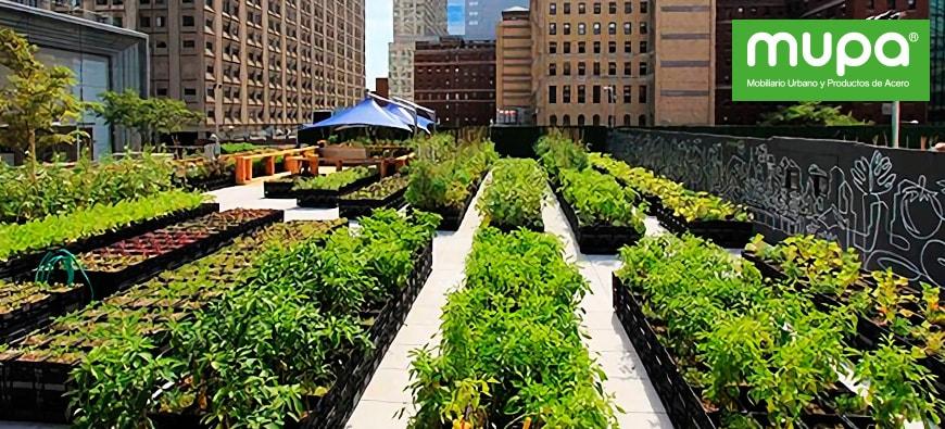 Huertos Urbanos:Una nueva alternativa de agricultura en la ciudad | MUPA
